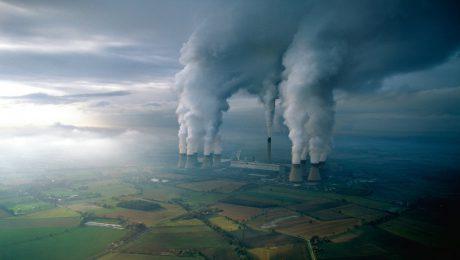 Portada del post plántalo, huella de CO2