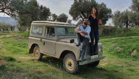 Plantación de 200 olivos en Teruel